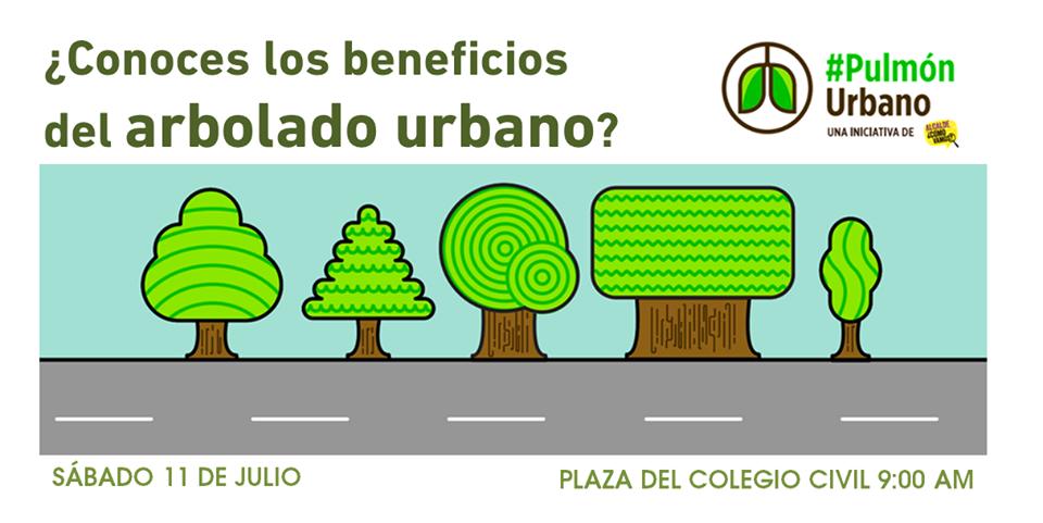 Pulmón Urbano 11 de julio 2015 - Alcalde Cómo Vamos