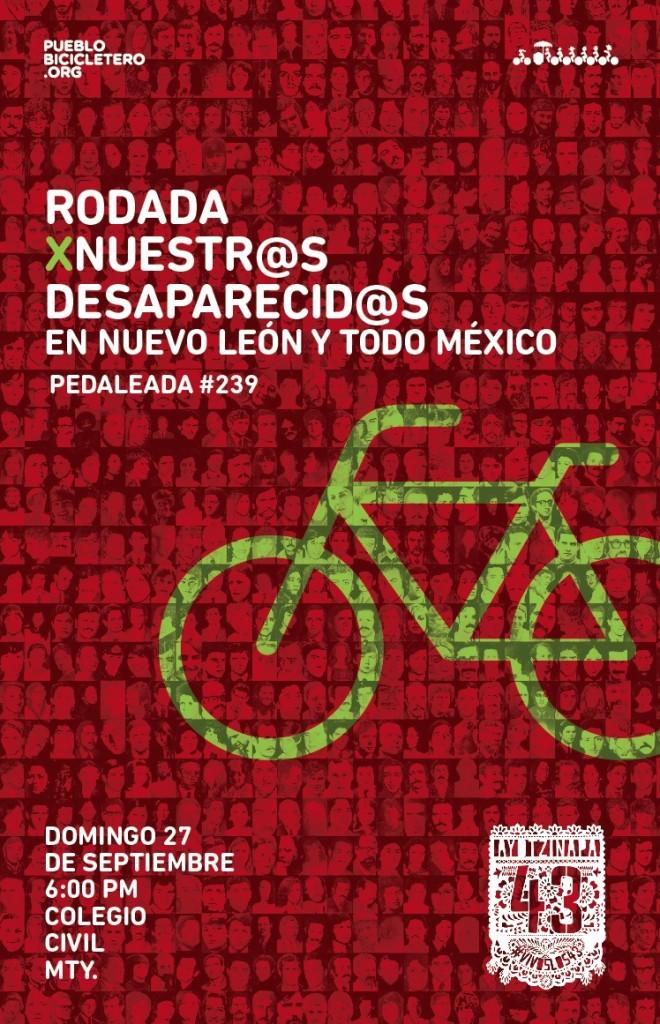Poster239desaparecidos